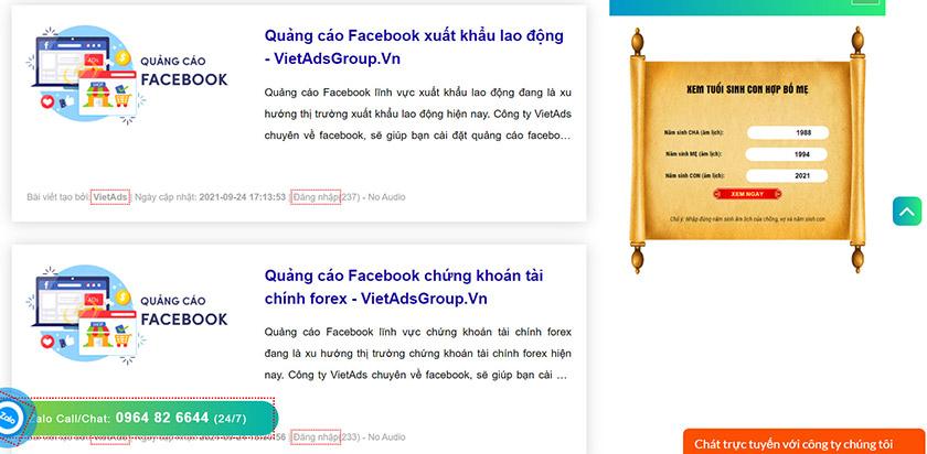 Công ty Facebook Ads Việt Ads